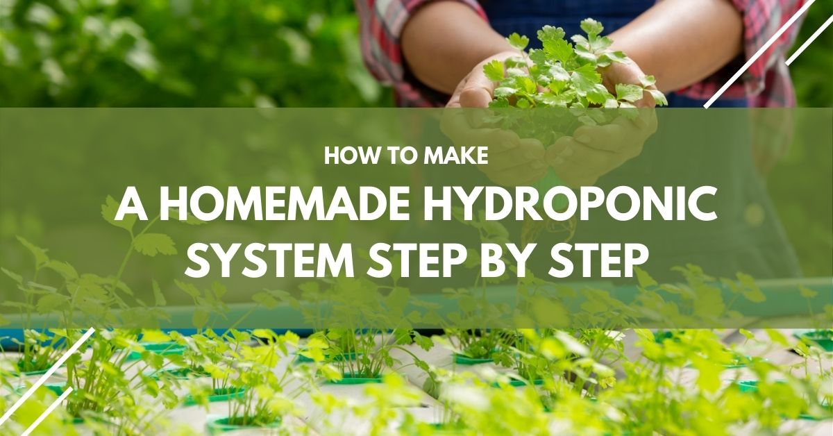 How To Make A Homemade Hydroponic System Step By Step
