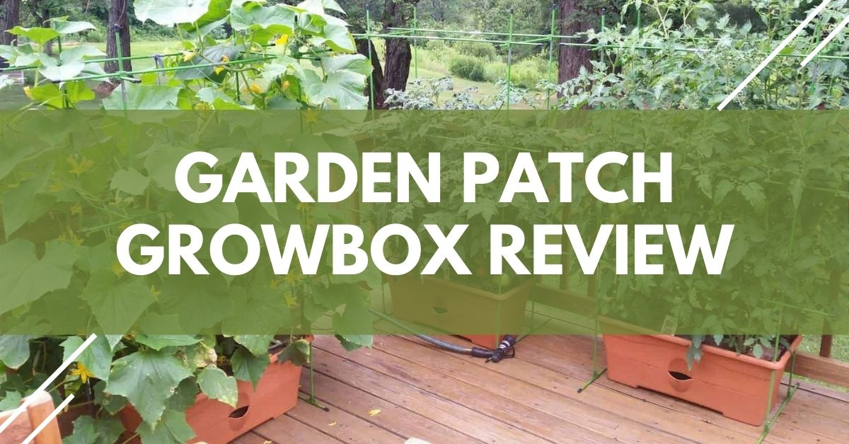The Garden Patch Growbox Review