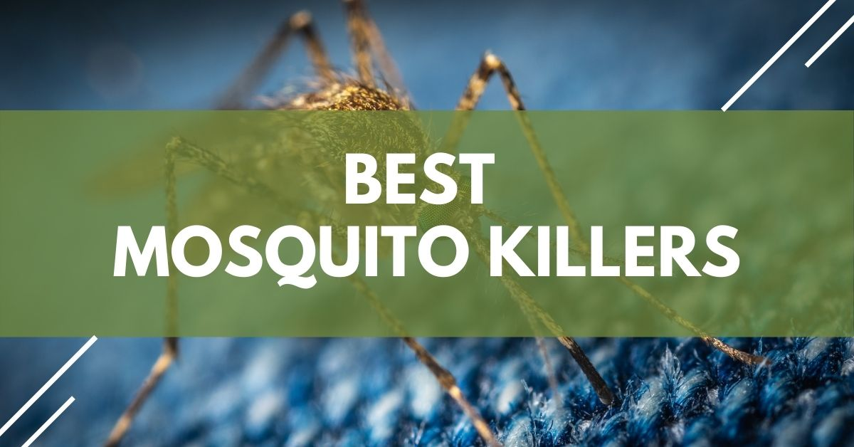 Best Mosquito Killers