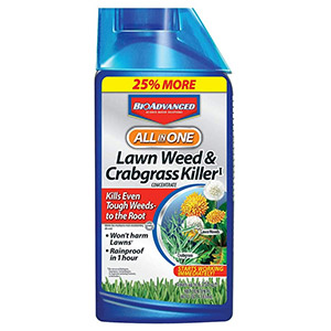 BioAdvanced 704140 Weed Killer