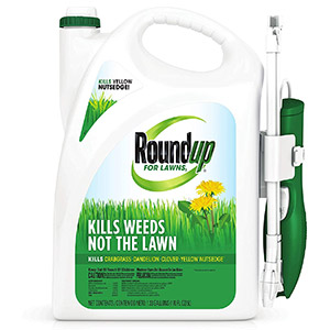 Roundup for Lawns 1 Weed Killer for Lawns