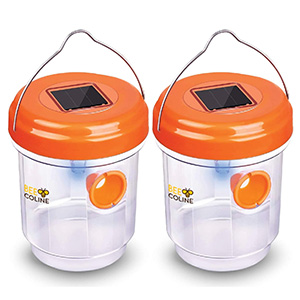 Bee Coline Outdoor Wasp Trap